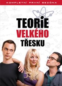Teorie velkého třesku 1 (The Big Bang Theory)